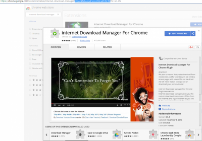 IDM extension for Chrome | Wilders Security Forums