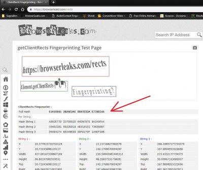 BROWSER FINGERPRINT SPOOFING - A Proposal of a Cross-Browser